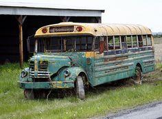 bus-image