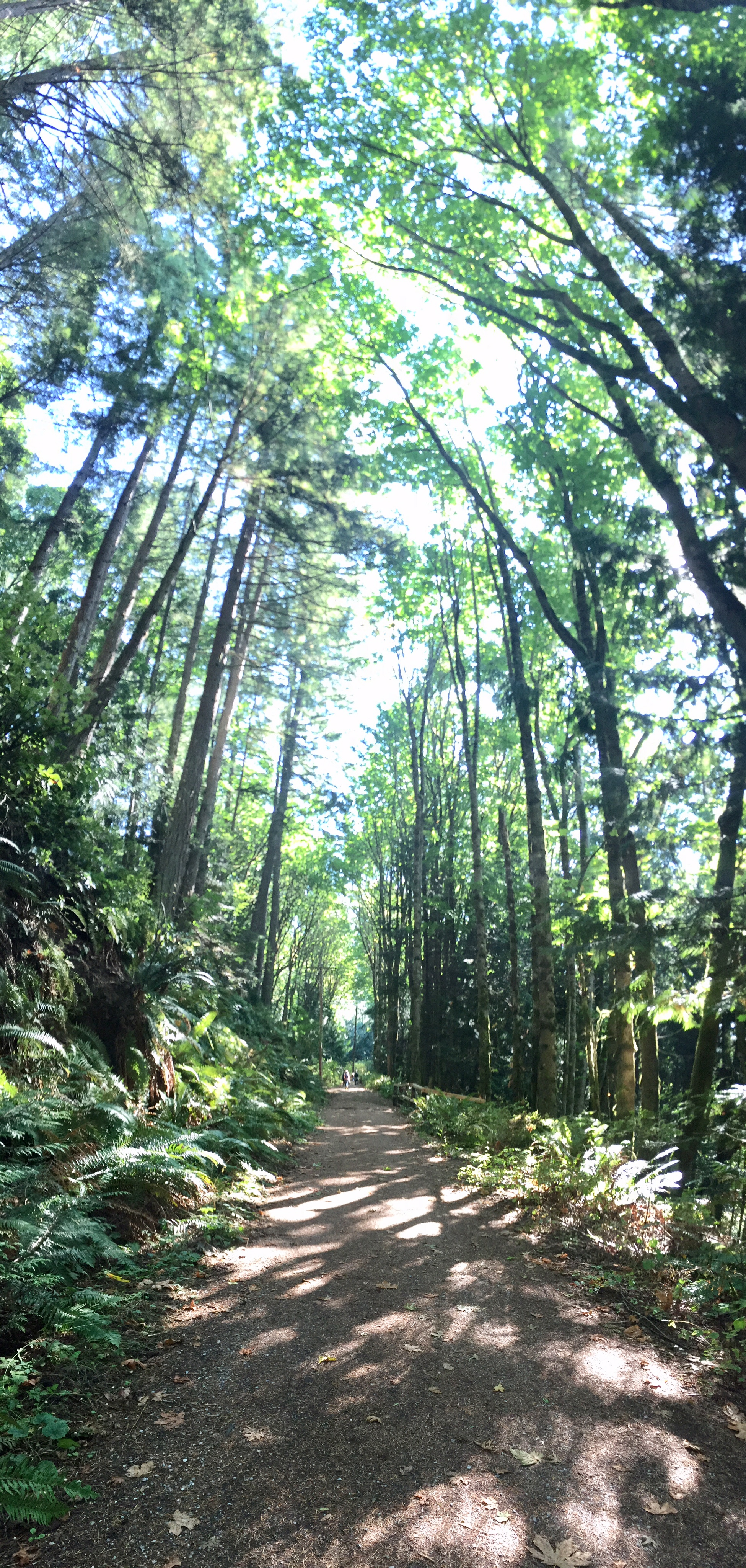 Sept Path