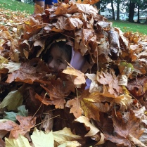 abby in leaves