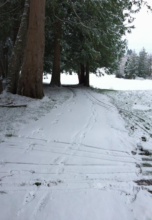 December path