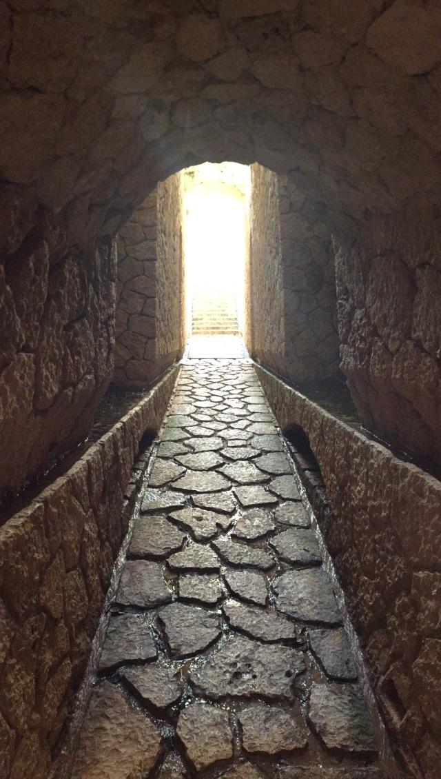 xcaret path